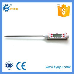 Digital liquid thermometer