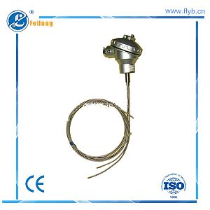 Multipoint sheathed thermocouple